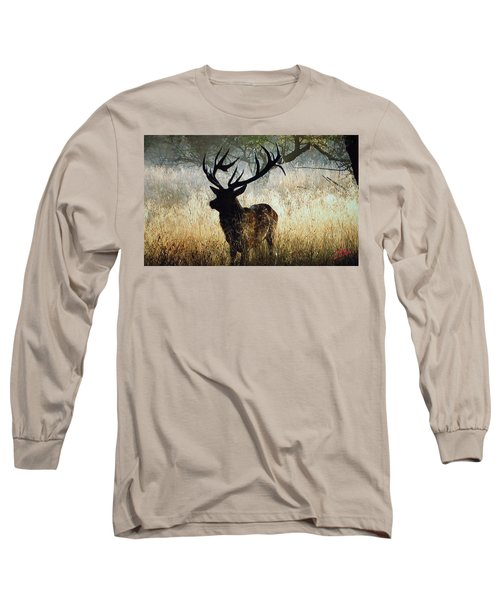 Long Sleeve T-Shirt featuring the photograph Autumn Forest Walk In Denmark  by Colette V Hera  Guggenheim