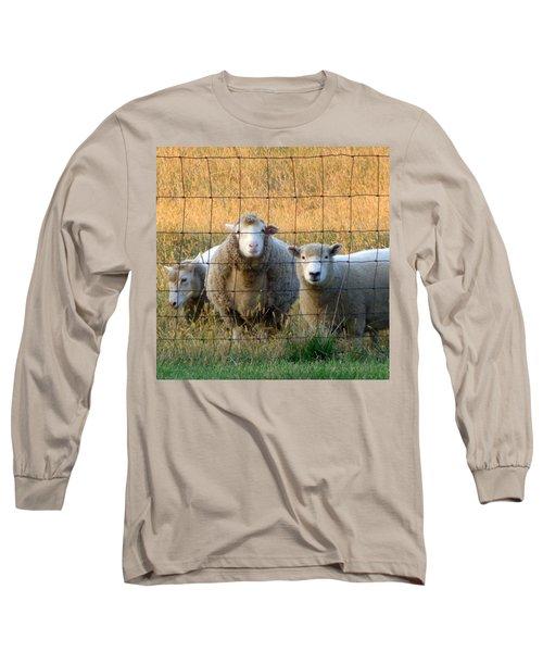 Long Sleeve T-Shirt featuring the photograph Baaaaa by Joseph Skompski