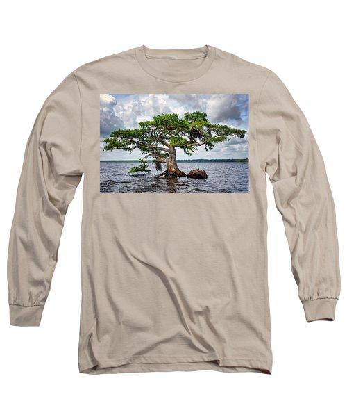 Bald Cypress Long Sleeve T-Shirt