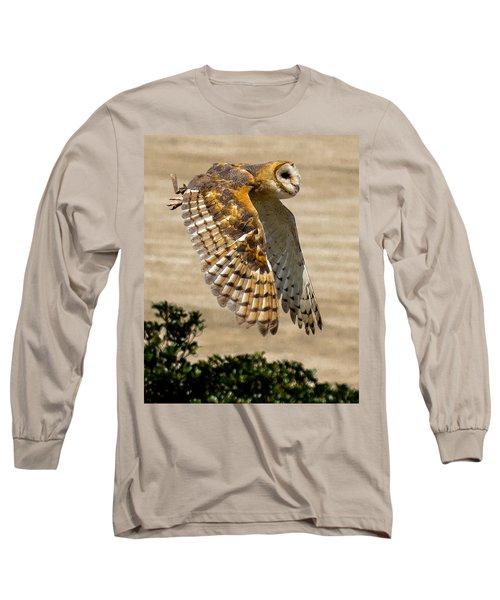 Barn Owl Long Sleeve T-Shirt by Robert L Jackson
