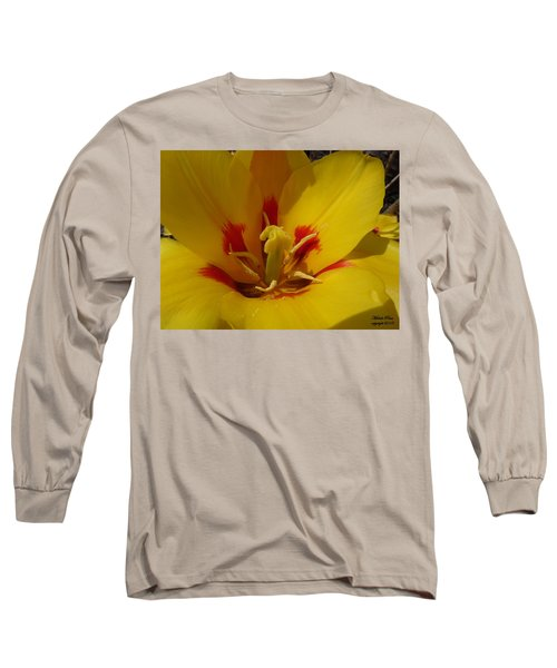 Be Drawn In - Signed Long Sleeve T-Shirt