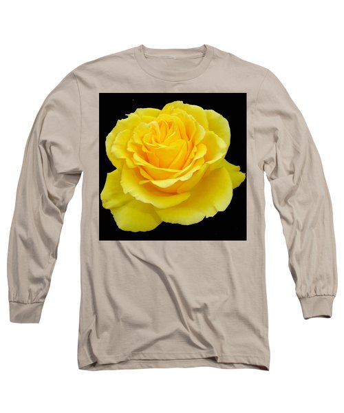 Beautiful Yellow Rose Flower On Black Background  Long Sleeve T-Shirt