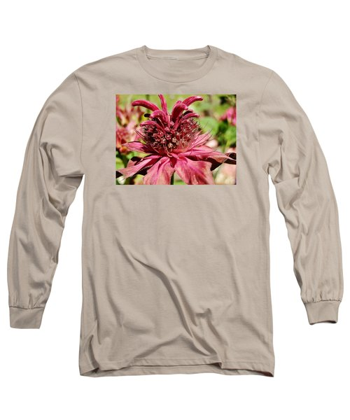 Bee Balm Details Long Sleeve T-Shirt by VLee Watson