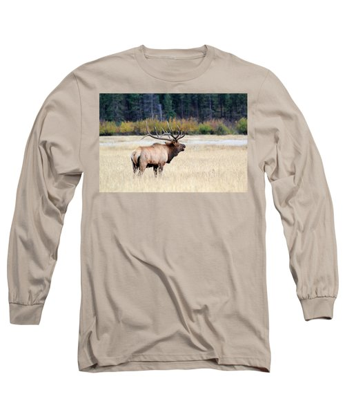 Big Colorado Bull Long Sleeve T-Shirt