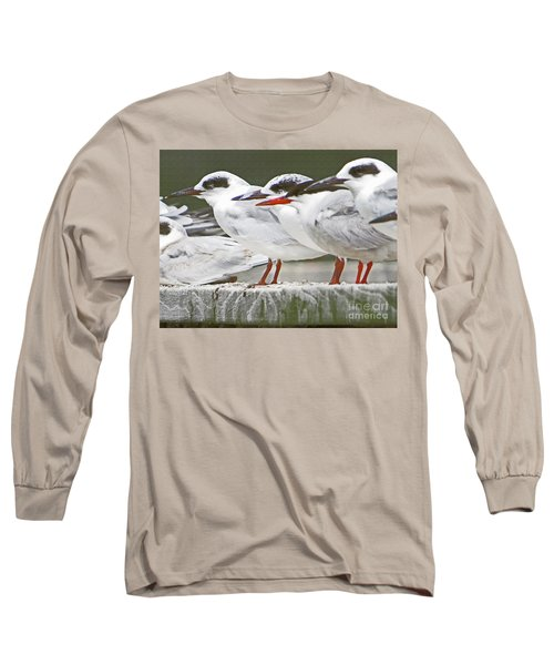 Birds On A Ledge Long Sleeve T-Shirt
