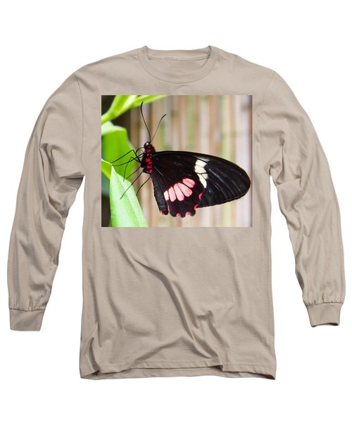 Black And Red Cattleheart Butterfly Long Sleeve T-Shirt by Amy McDaniel