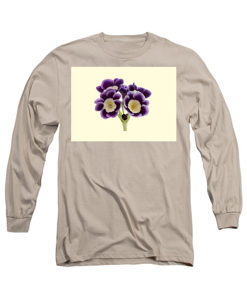 Blue Auricula On A Cream Background Long Sleeve T-Shirt by Paul Gulliver