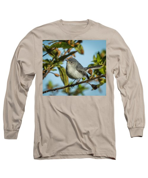 Blue-gray Gnatcatcher Long Sleeve T-Shirt