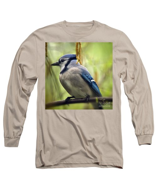 Blue Jay On A Misty Spring Day - Square Format Long Sleeve T-Shirt by Lois Bryan