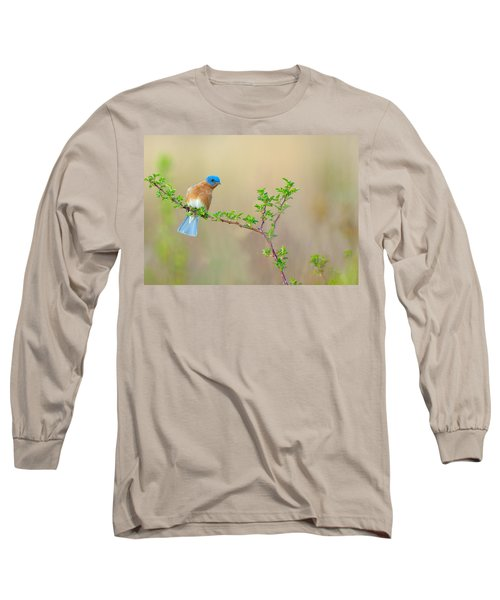 Bluebird Breeze Long Sleeve T-Shirt