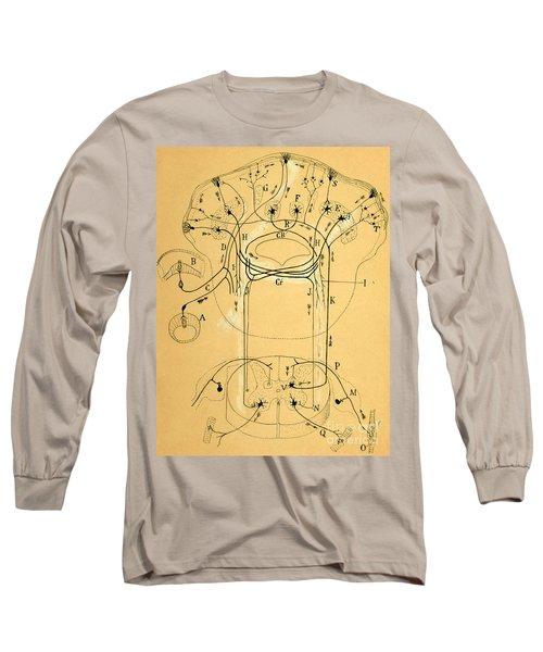 Brain Vestibular Sensor Connections By Cajal 1899 Long Sleeve T-Shirt