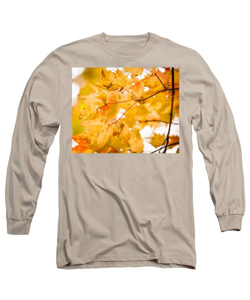 Branching Yellow Long Sleeve T-Shirt