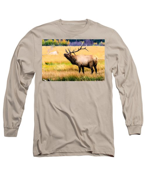Bull Elk - Colorado Long Sleeve T-Shirt