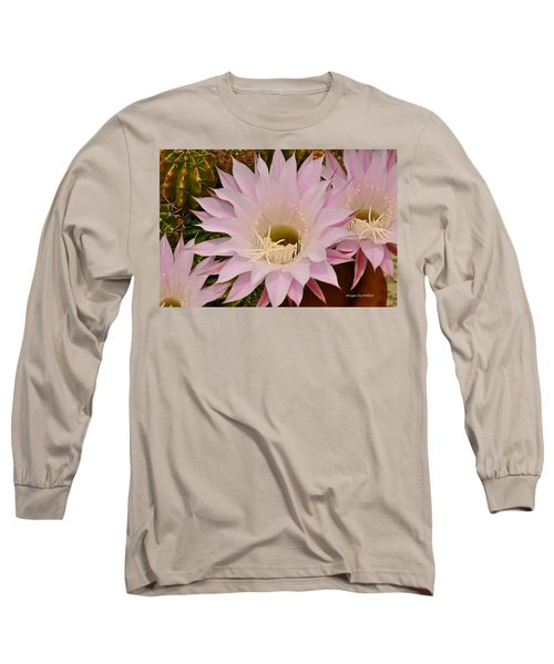 Cactus In The Backyard Long Sleeve T-Shirt