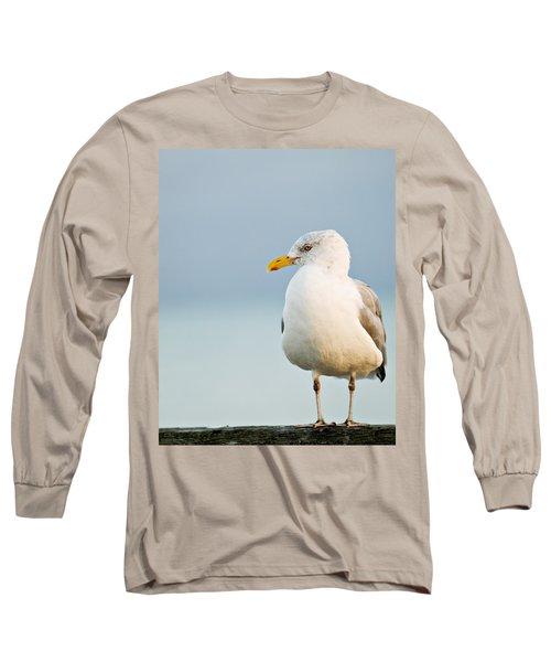 Cape Cod Seagull Long Sleeve T-Shirt