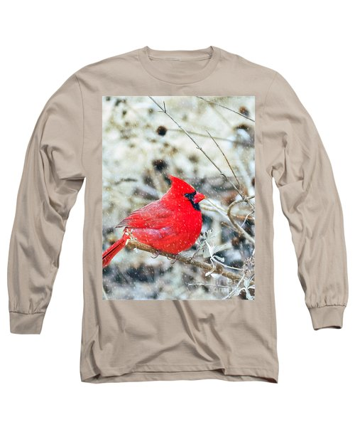 Cardinal Bird Christmas Card Long Sleeve T-Shirt by Peggy Franz