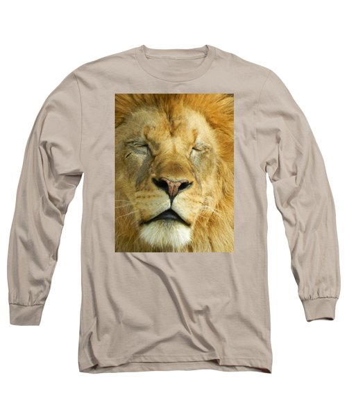 Cat Nap Long Sleeve T-Shirt by Emmy Marie Vickers