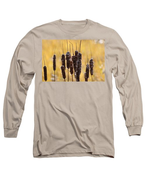 Cat Tails In November Long Sleeve T-Shirt by Bruce Patrick Smith