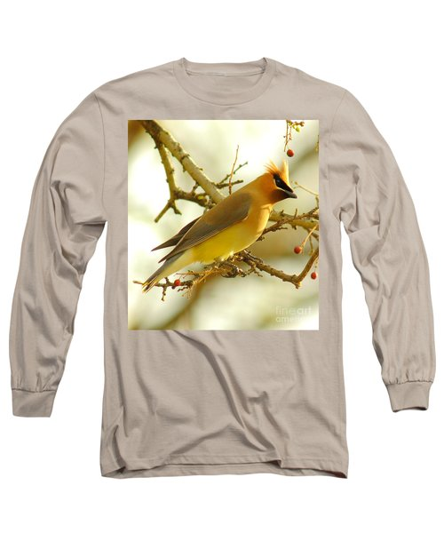 Cedar Waxwing Long Sleeve T-Shirt by Robert Frederick