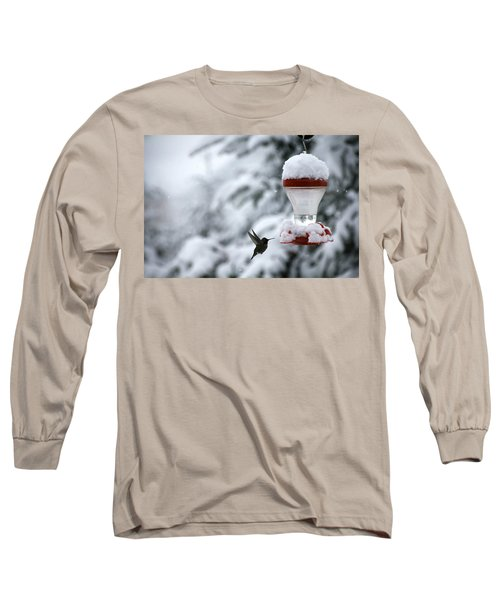 Long Sleeve T-Shirt featuring the photograph Christmas Hummingbird by Katie Wing Vigil