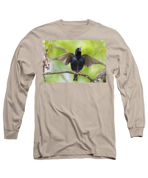 Common Starling Singing Bavaria Long Sleeve T-Shirt by Konrad Wothe