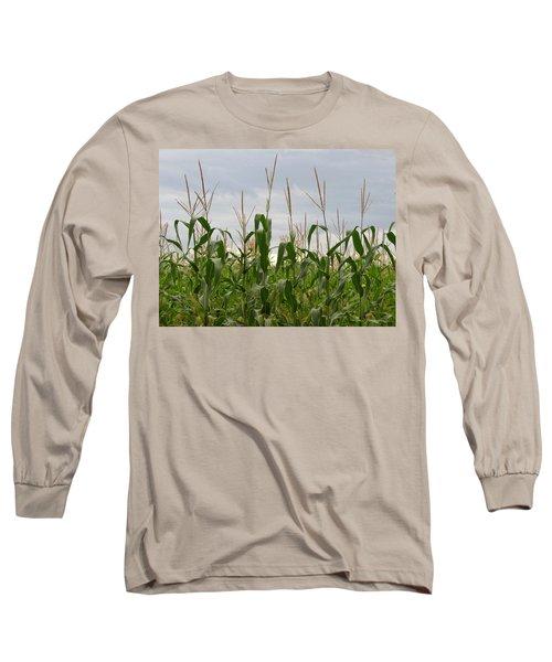 Corn Field Long Sleeve T-Shirt by Laurel Powell