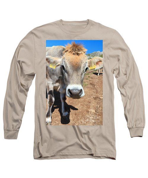 Cow On Alpine Pasture Long Sleeve T-Shirt