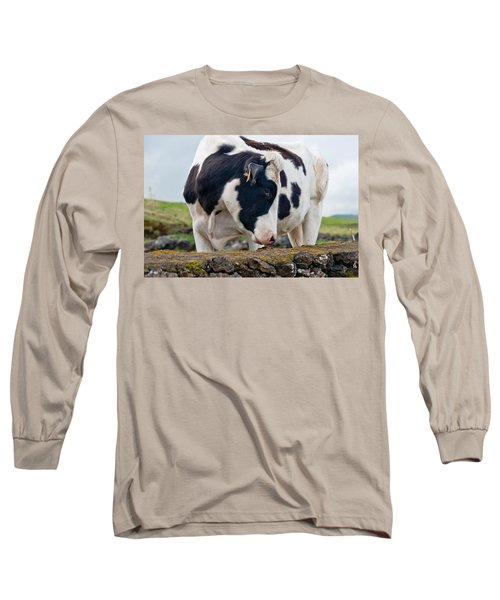Cow With Head Turned Long Sleeve T-Shirt