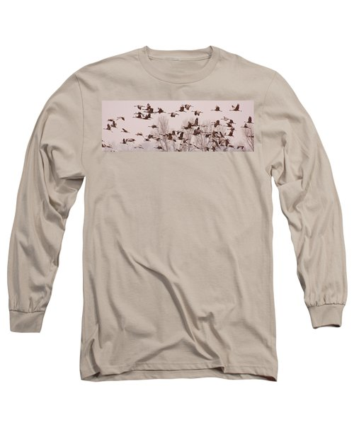 Long Sleeve T-Shirt featuring the photograph Cranes Across The Sky by Don Schwartz