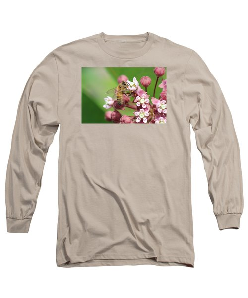 Crazy For Milkweed Long Sleeve T-Shirt by Lucinda VanVleck