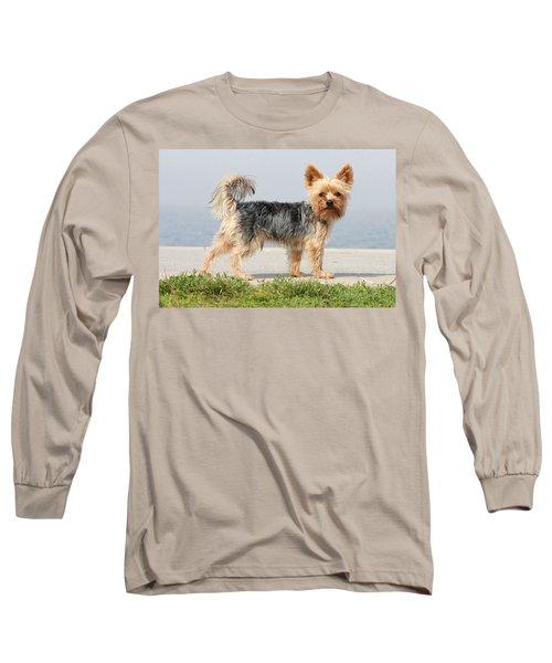 Cut Little Dog In The Sun Long Sleeve T-Shirt