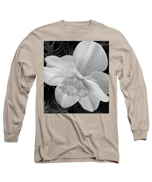 Daffodil Study Long Sleeve T-Shirt