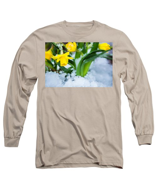 Daffodils In The Snow  Long Sleeve T-Shirt