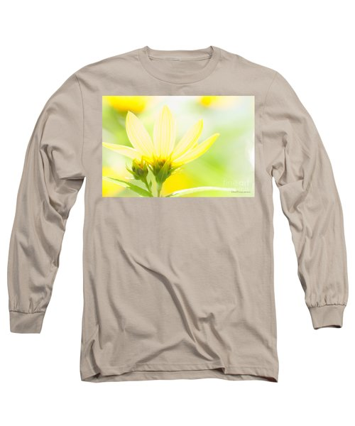 Daisies In The Sun Long Sleeve T-Shirt by David Perry Lawrence