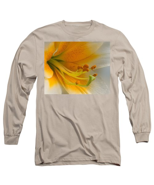 Gold Daylily Close-up Long Sleeve T-Shirt