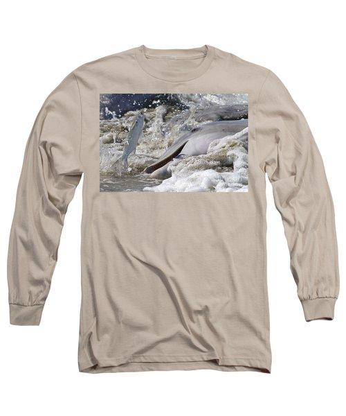 Dolphin Strand Feeding 2 Long Sleeve T-Shirt