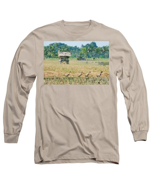 Long Sleeve T-Shirt featuring the photograph Ducks by Yew Kwang