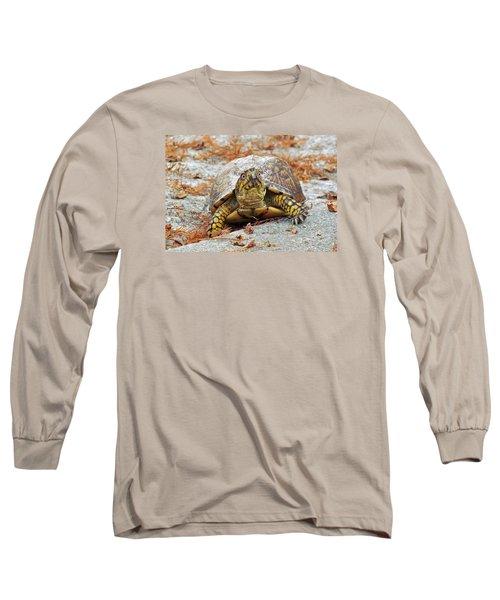 Long Sleeve T-Shirt featuring the photograph Eastern Box Turtle by Cynthia Guinn