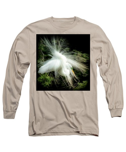 Elegance Of Creation Long Sleeve T-Shirt by Karen Wiles
