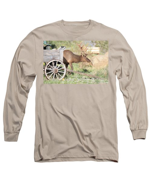 Elk Drawn Carriage Long Sleeve T-Shirt