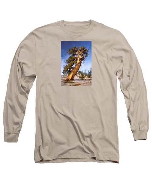 Endurance Long Sleeve T-Shirt by Alice Cahill