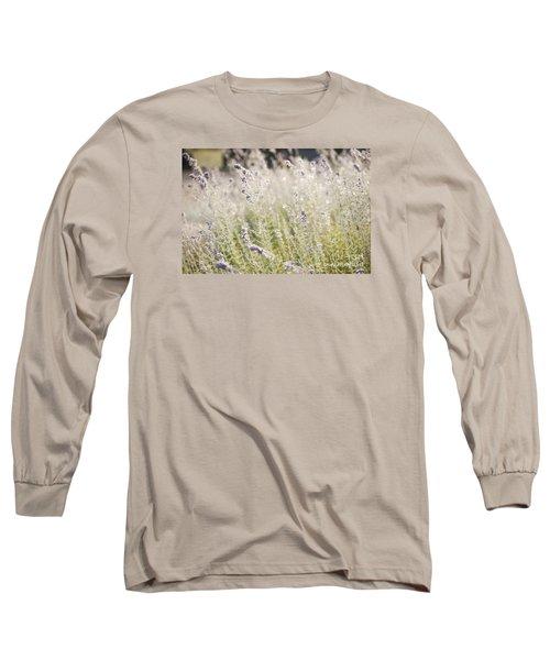 Field Of Lavender At Clos Lachance Vineyard In Morgan Hill Ca Long Sleeve T-Shirt