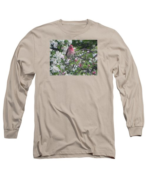 Finch In Apple Tree Long Sleeve T-Shirt by Christine Lathrop