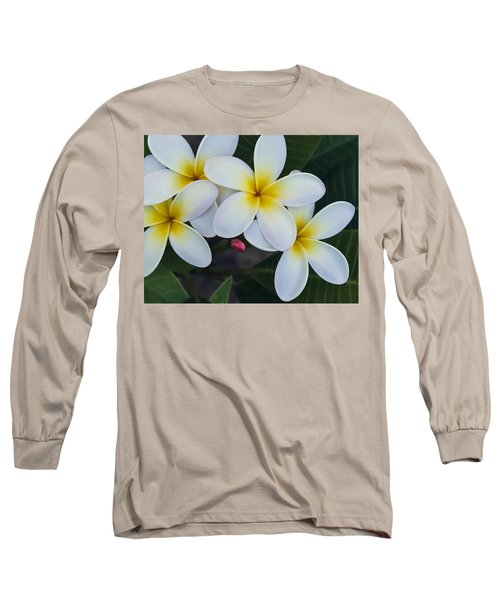Flowers And Their Bud Long Sleeve T-Shirt