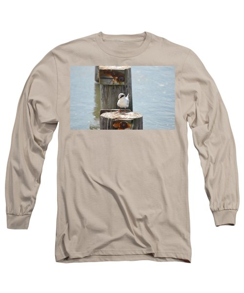 Forster's Tern Long Sleeve T-Shirt by James Petersen
