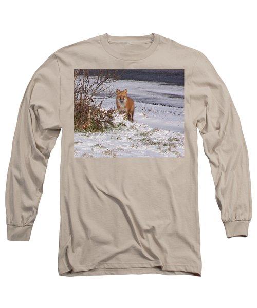 Fox In My Yard Long Sleeve T-Shirt