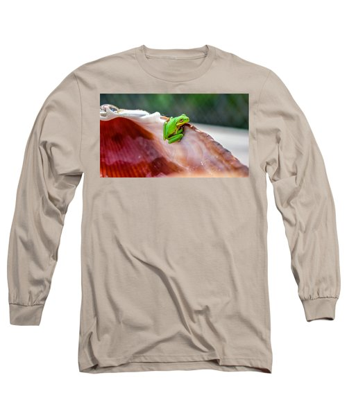 Frog In A Cockle Long Sleeve T-Shirt
