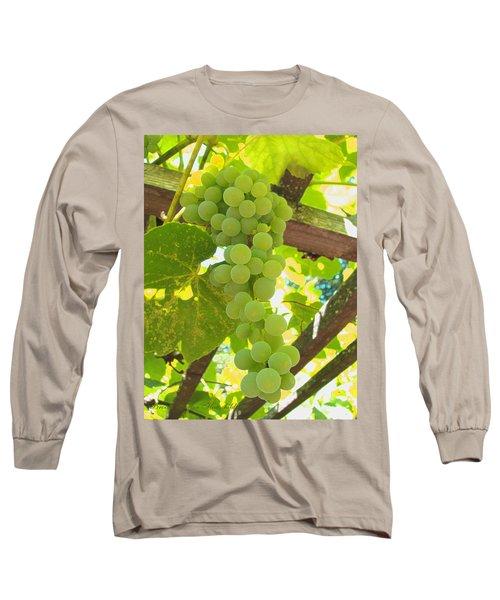 Fruit Of The Vine - Garden Art For The Kitchen Long Sleeve T-Shirt by Brooks Garten Hauschild