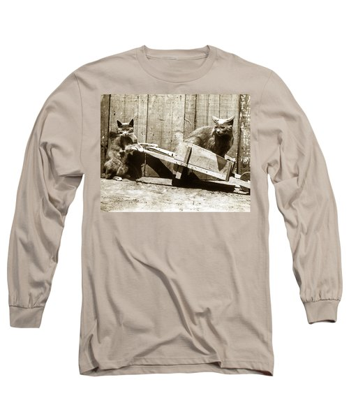 Long Sleeve T-Shirt featuring the photograph Fun With Cats Henry King Nourse Photographer Circa 1900 by California Views Mr Pat Hathaway Archives