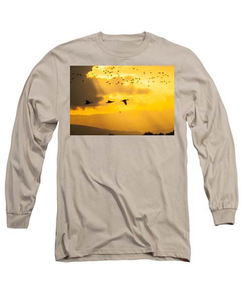 Geese At Sunset-2 Long Sleeve T-Shirt by Brian Williamson